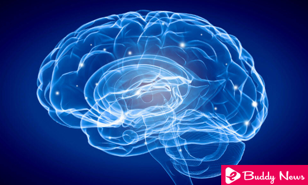 10 Tricks To Keep Your Brain Healthy - ebuddtnews