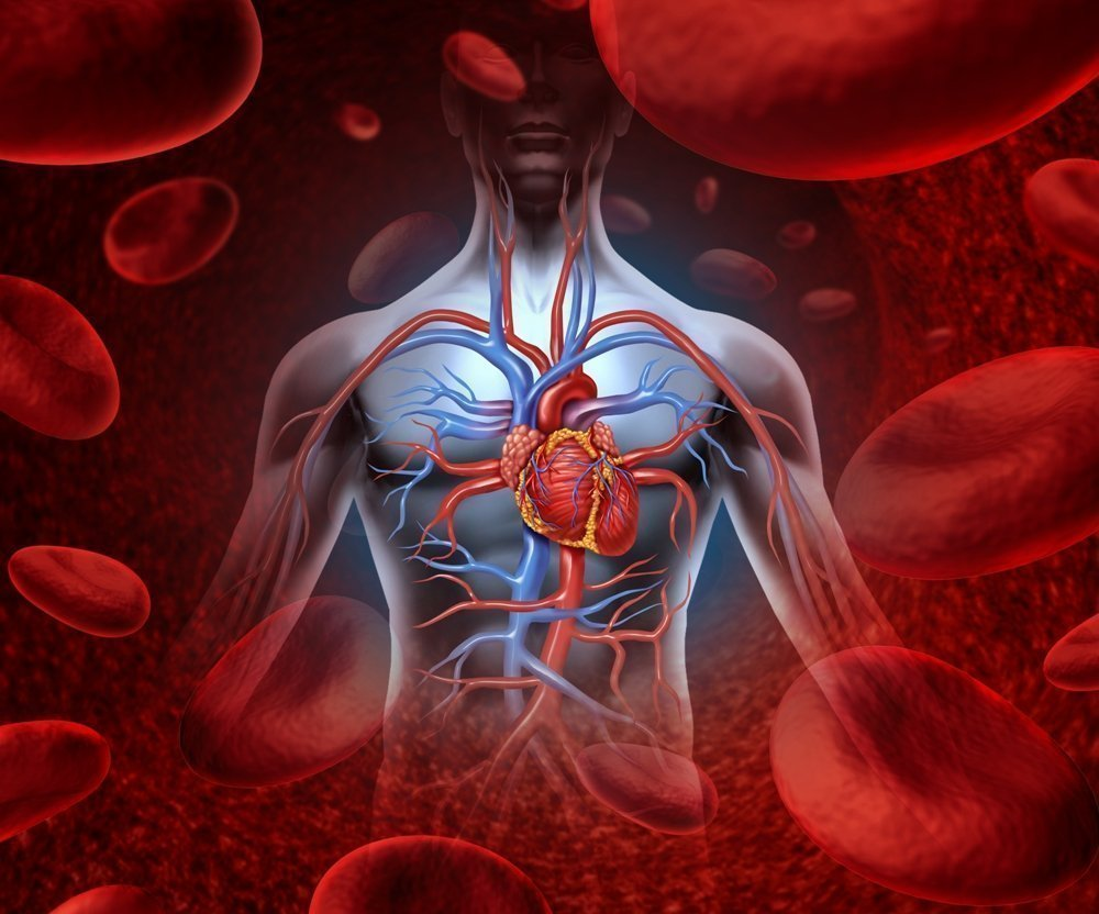 Best Methods To Maintain a Good Flow Of Blood Circulation ebuddynews