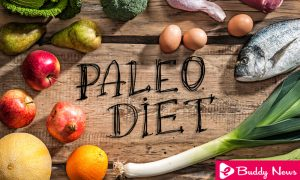 Diet Paleo or Paleo Diet - It Is Interesting As A Way Of Life ebuddynews