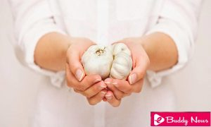 Garlic Natural Way To Boost The Immune System ebuddynews