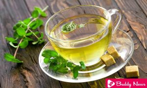 Properties and Health Benefits of Mint Tea You Should Know - ebuddynews