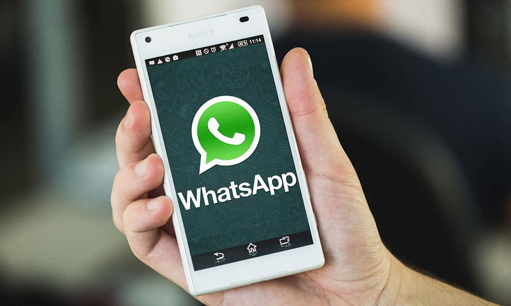 Whatsapp-ebuddynews