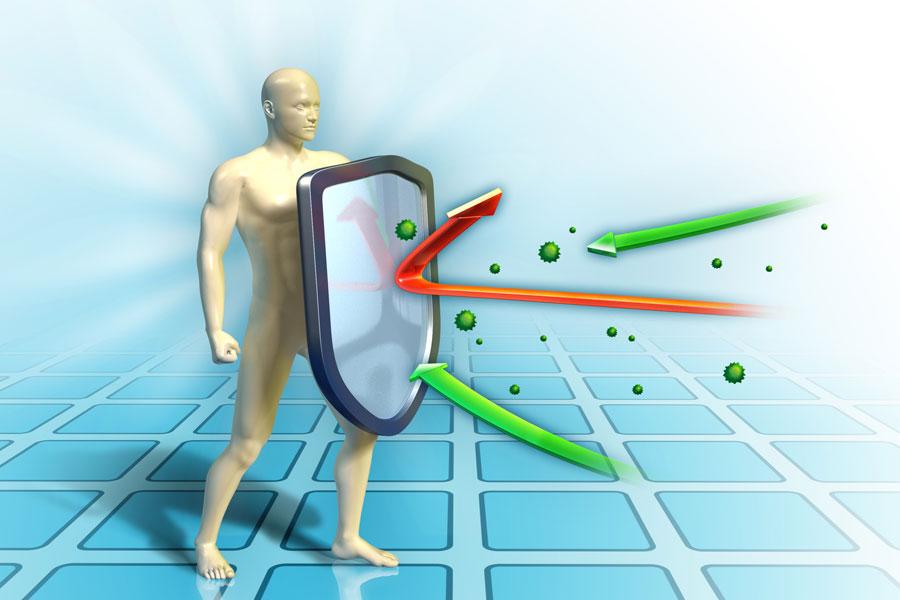 Boost Your Immune System - eBuddynews