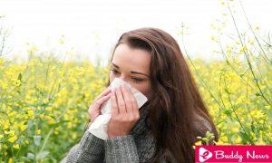 The 5 Best Remedies To Treat Pollen Allergy - ebuddynews