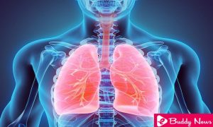 All You Need To Know About Causes and Symptoms of Pulmonary Edema - eBuddy News