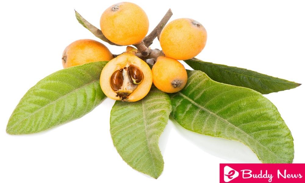 11 Interesting And Incredible Benefits Of Medlar Leaves - eBuddy News