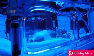 Jaundice In The Newborn, What Should I Know - eBuddy News