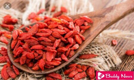 Benefits of Goji Berries And How To Add them In Diet - eBuddy News