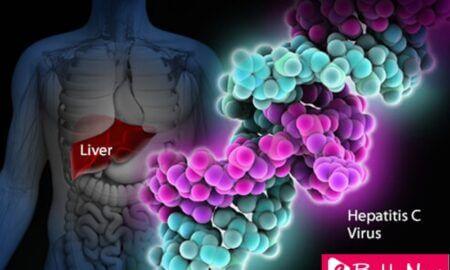 Discovery of Hepatitis C Virus Wins 2020 Nobel Prize in Medicine - eBuddy News